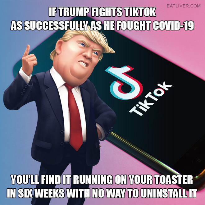 If Trump fights TikTok as successfully as he fought Covid-19, you'll find it running on your toaster in six weeks with no way to uninstall it.